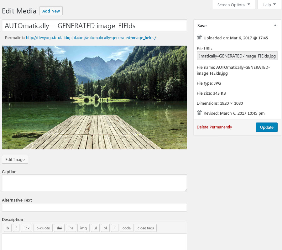 Wordpress Default Image Upload Fields